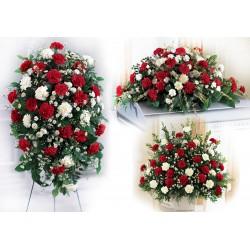 Family Carnation (FFPK15)