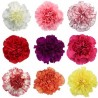 Single Stem Carnation Mix Colors (FFTC3)